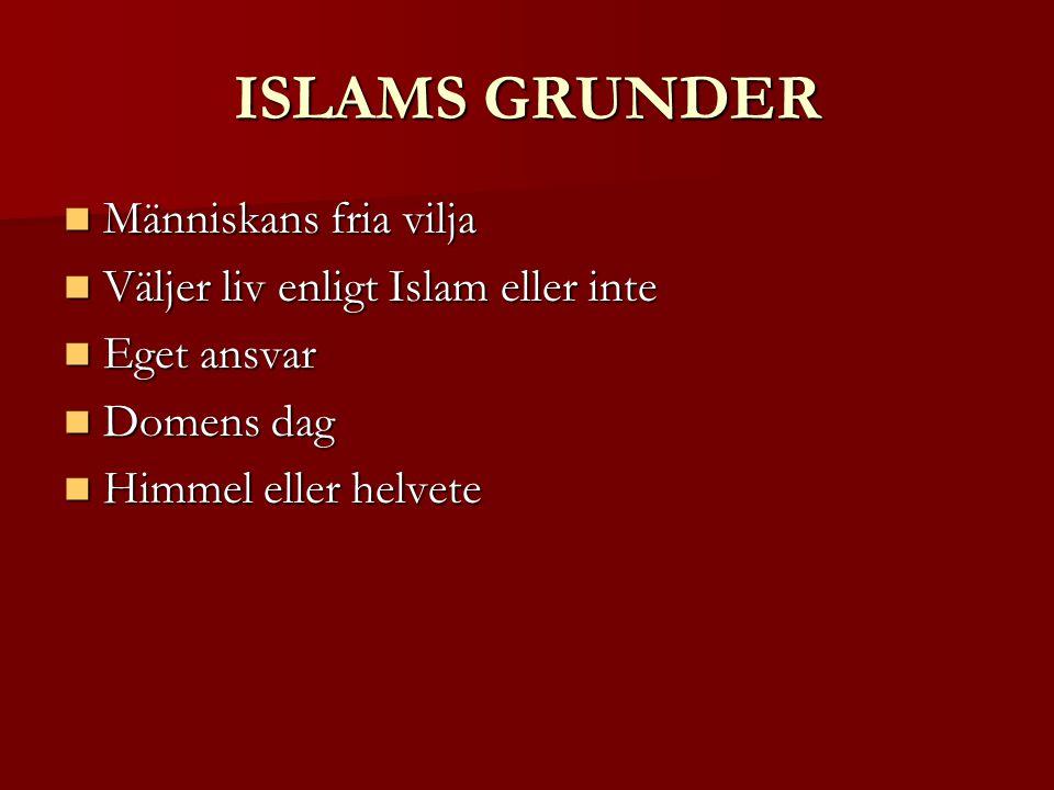 ISLAMS GRUNDER Människans fria vilja
