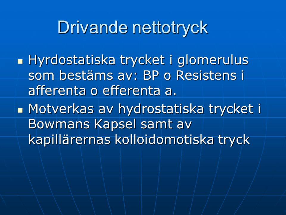 Drivande nettotryck Hyrdostatiska trycket i glomerulus som bestäms av: BP o Resistens i afferenta o efferenta a.