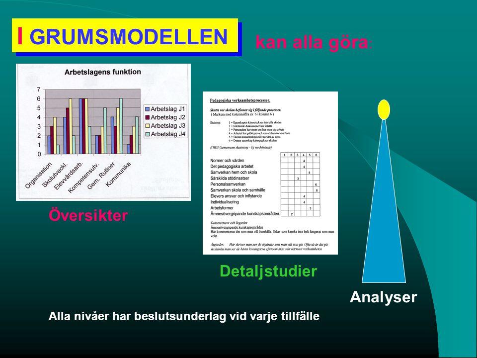 I GRUMSMODELLEN kan alla göra: Översikter Detaljstudier Analyser