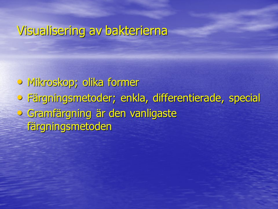 Visualisering av bakterierna