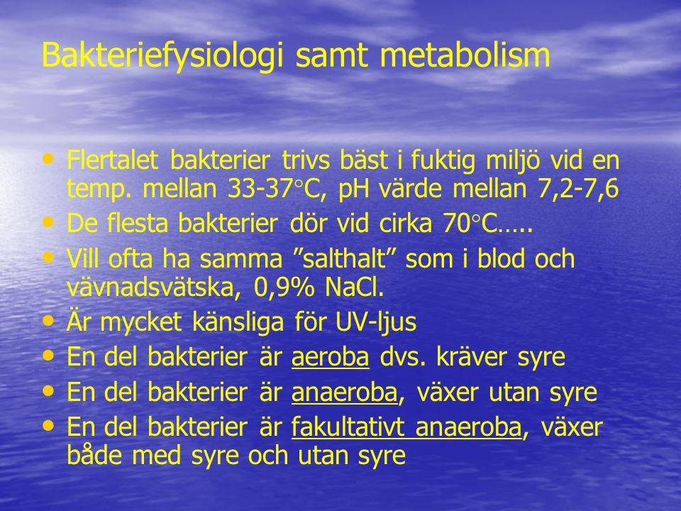 Bakteriefysiologi samt metabolism