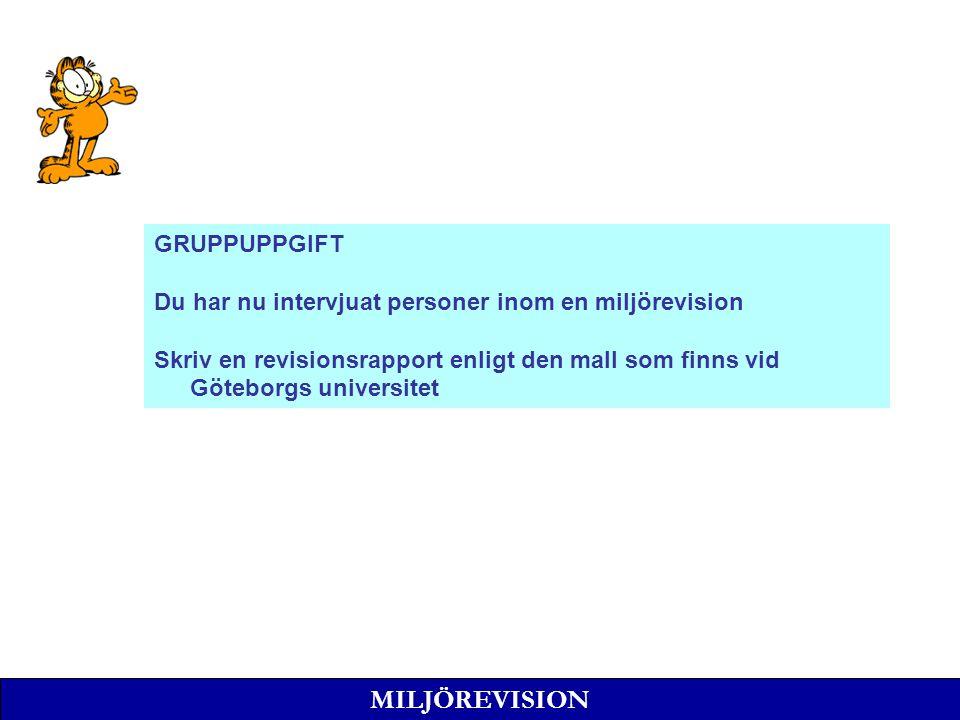 MILJÖREVISION GRUPPUPPGIFT