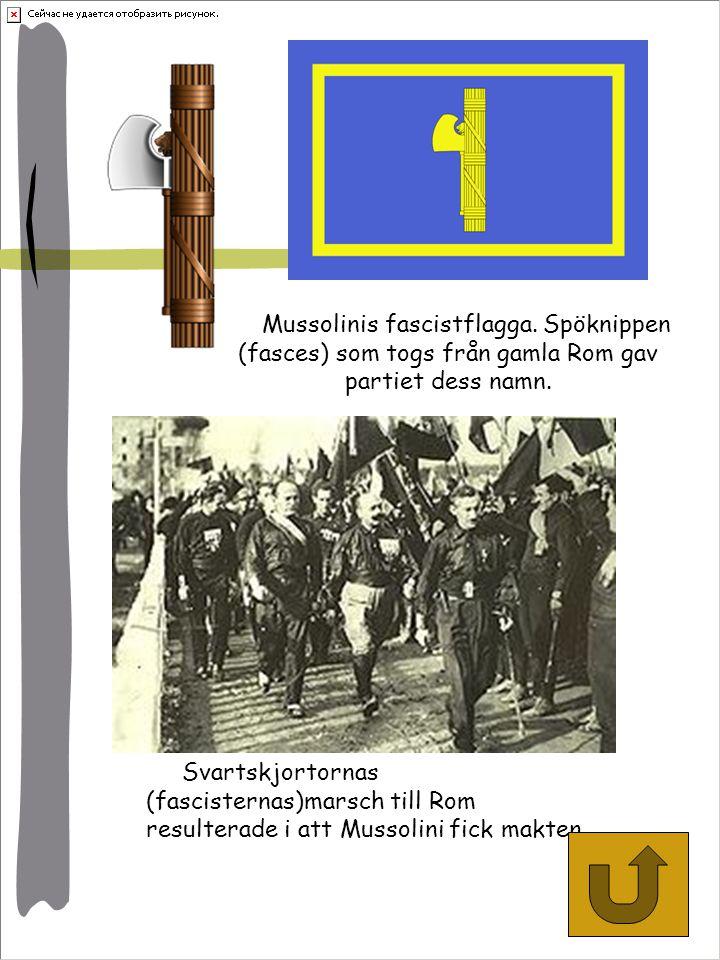 Mussolinis fascistflagga