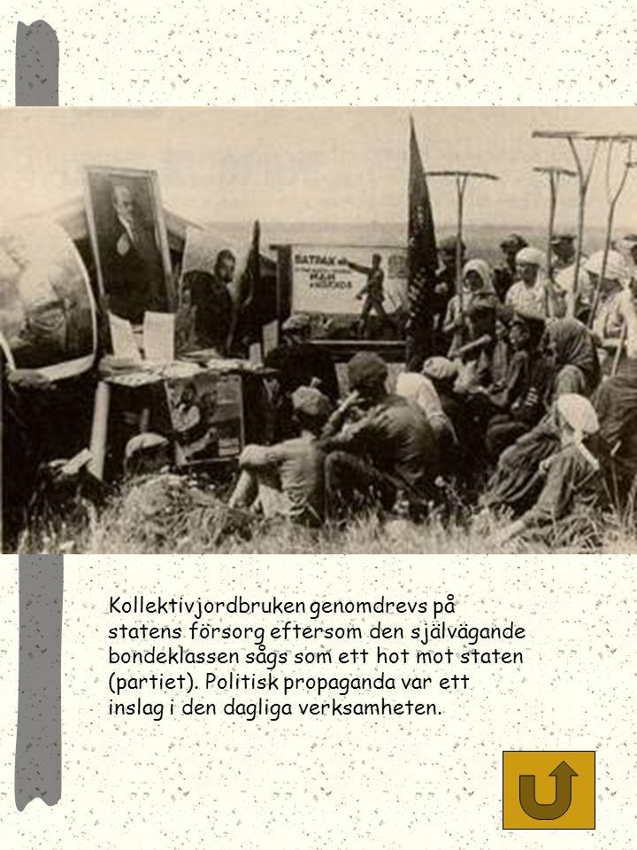 Kollektivjordbruken genomdrevs på statens försorg eftersom den självägande bondeklassen sågs som ett hot mot staten (partiet).