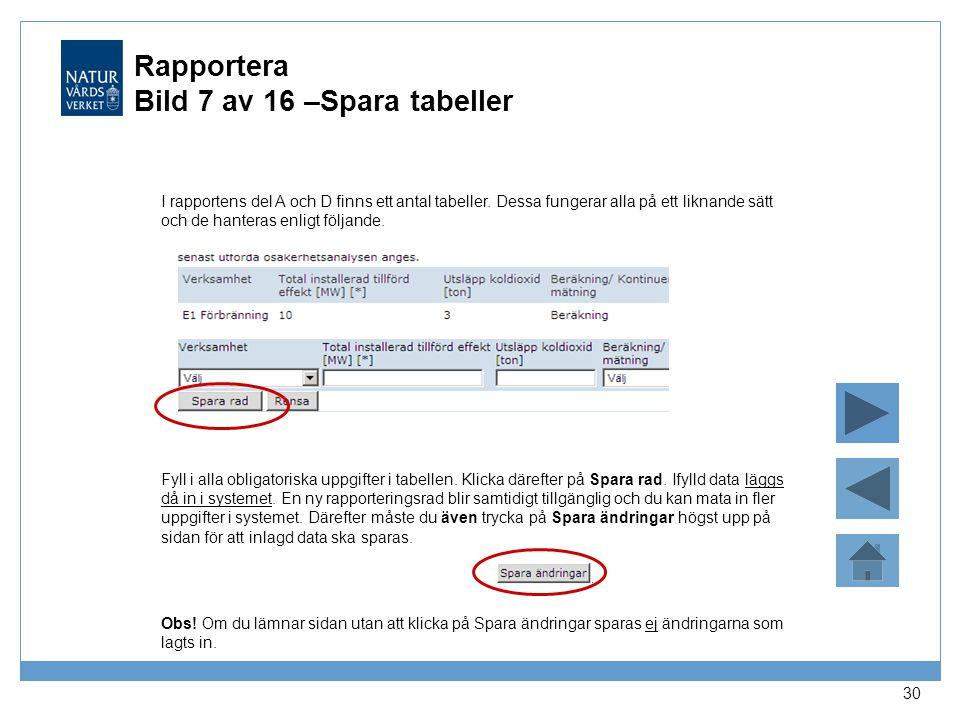 Rapportera Bild 7 av 16 –Spara tabeller