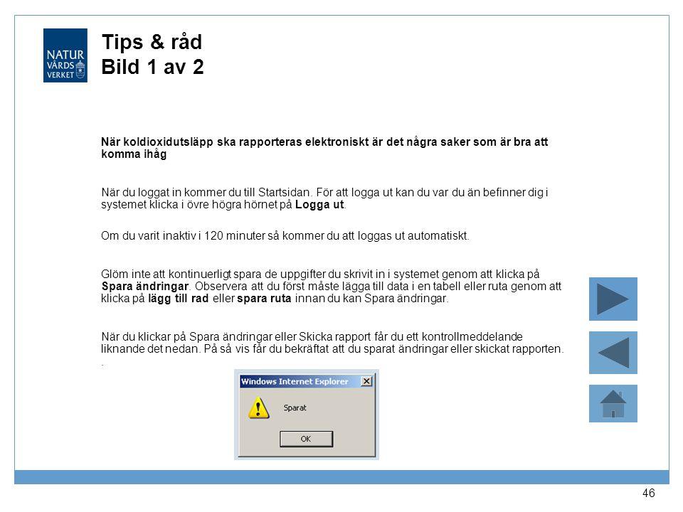 Tips & råd Bild 1 av 2 När koldioxidutsläpp ska rapporteras elektroniskt är det några saker som är bra att komma ihåg.