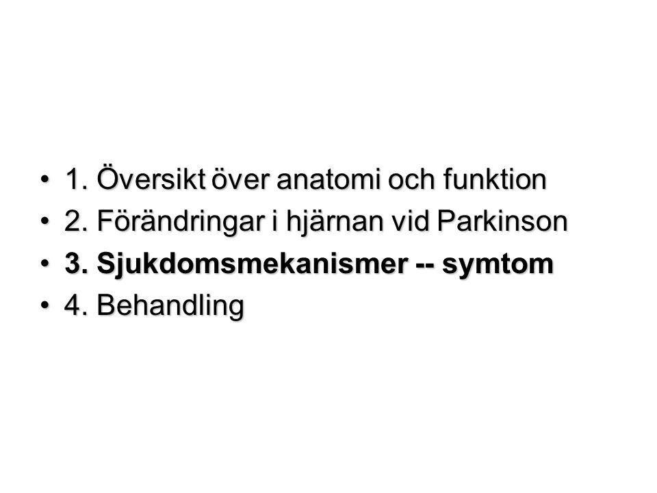 1. Översikt över anatomi och funktion