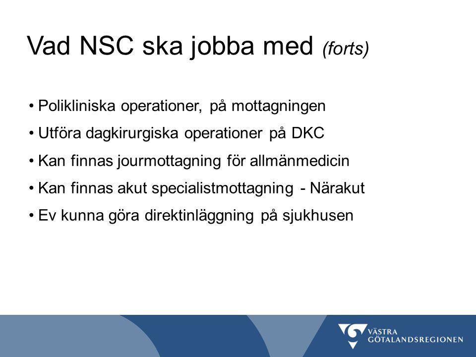 Vad NSC ska jobba med (forts)