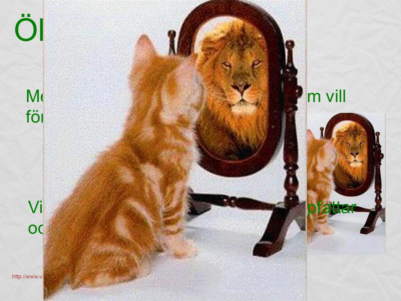 Vi går bland annat igenom hur du uppfattar och bedömer sig själv