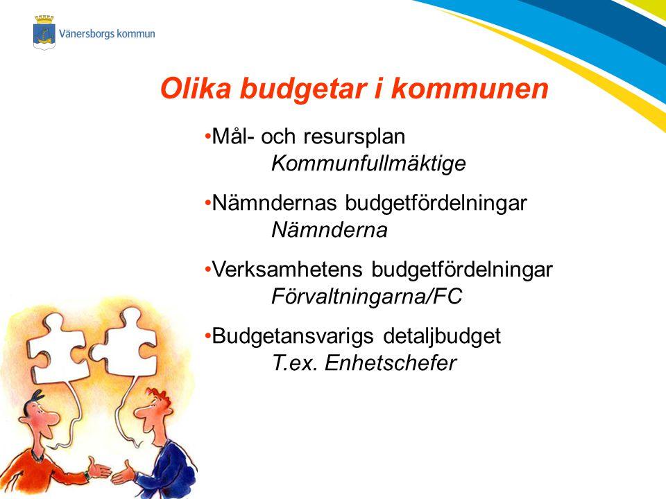 Olika budgetar i kommunen
