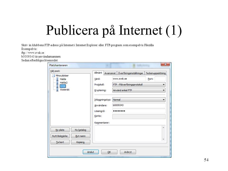 Publicera på Internet (1)