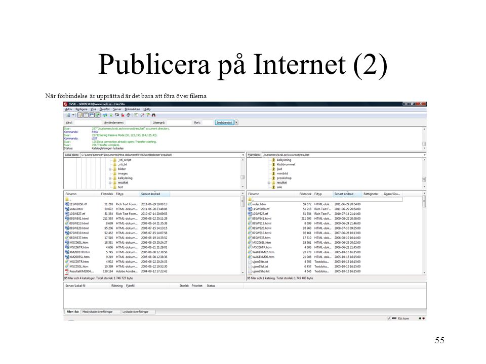 Publicera på Internet (2)