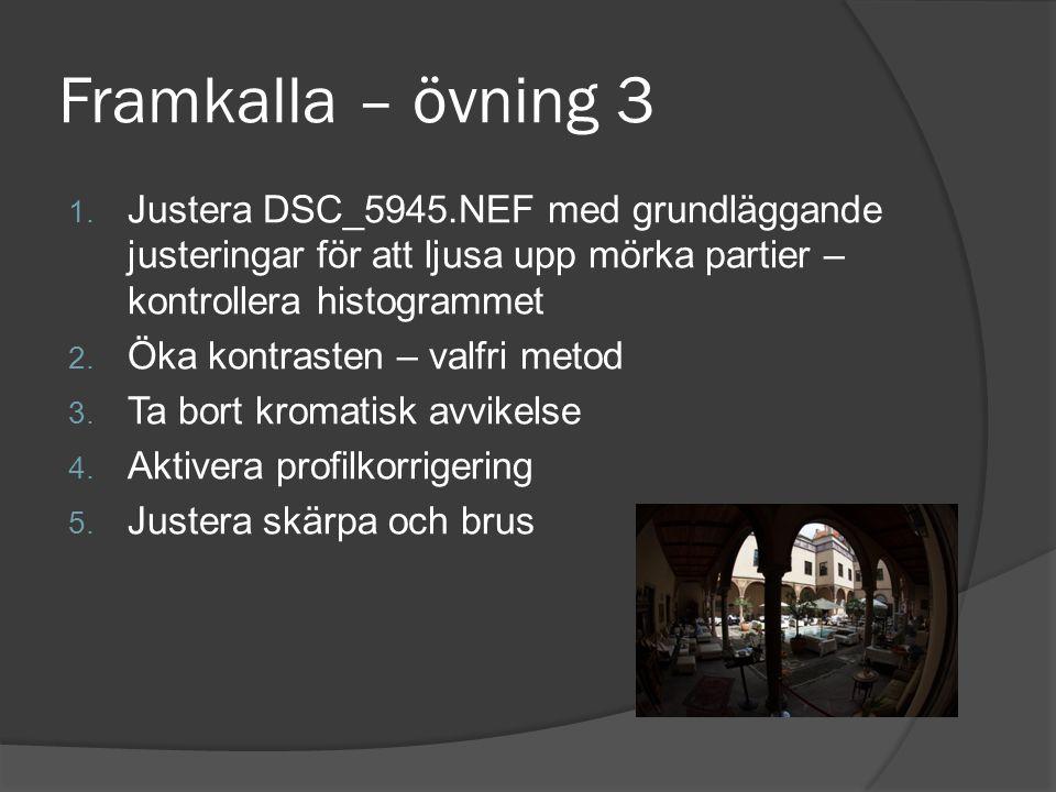 Framkalla – övning 3 Justera DSC_5945.NEF med grundläggande justeringar för att ljusa upp mörka partier – kontrollera histogrammet.