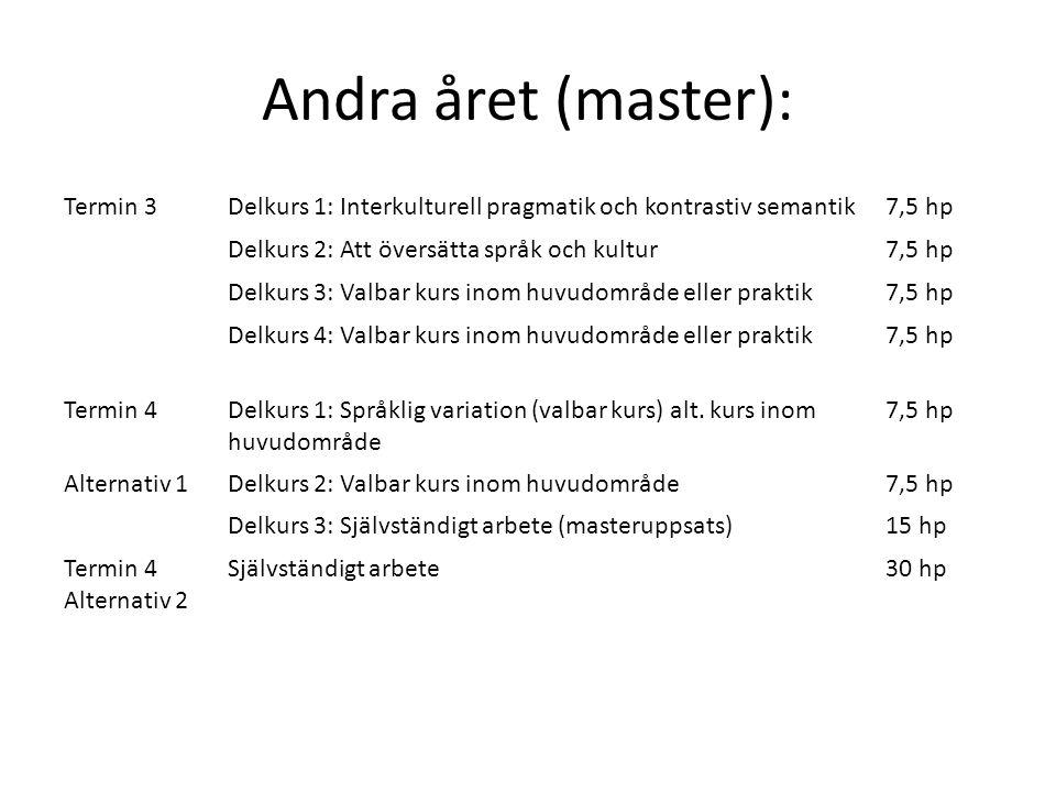 Andra året (master): Termin 3