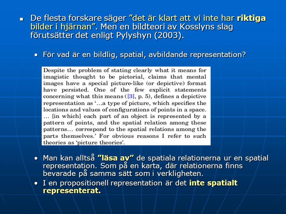 De flesta forskare säger det är klart att vi inte har riktiga bilder i hjärnan . Men en bildteori av Kosslyns slag förutsätter det enligt Pylyshyn (2003).