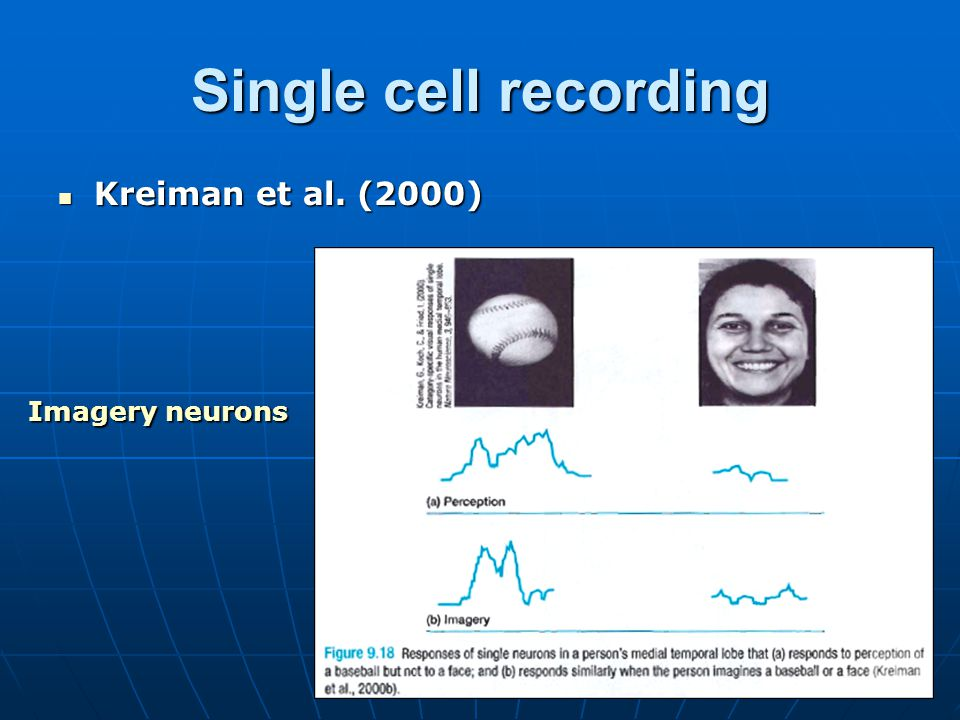 Single cell recording Kreiman et al. (2000) Imagery neurons