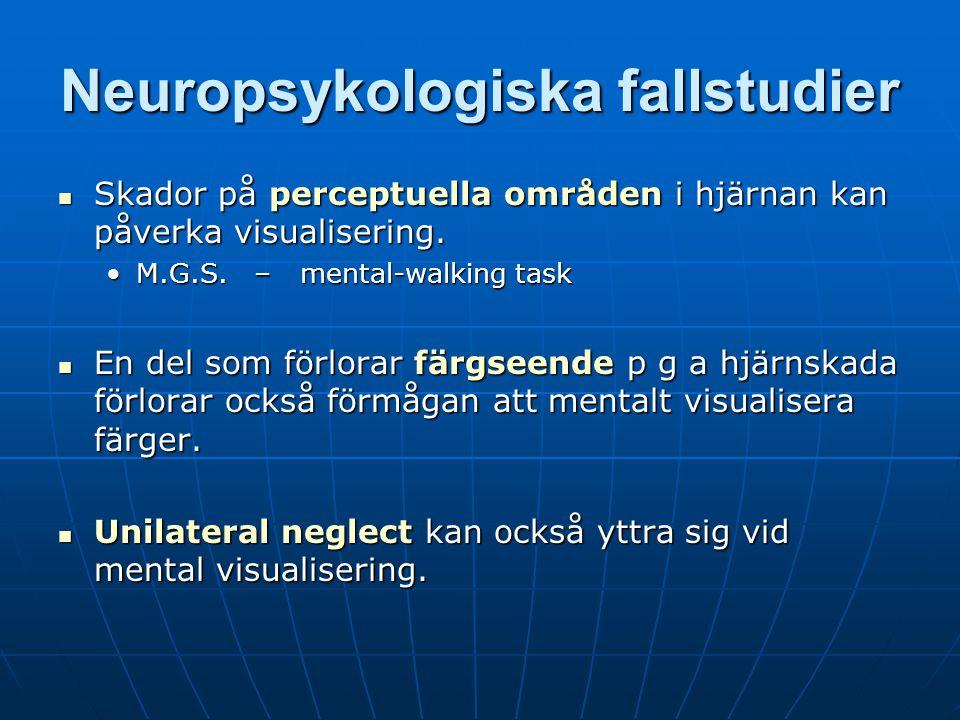 Neuropsykologiska fallstudier
