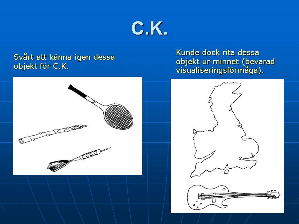 C.K. Kunde dock rita dessa objekt ur minnet (bevarad visualiseringsförmåga).