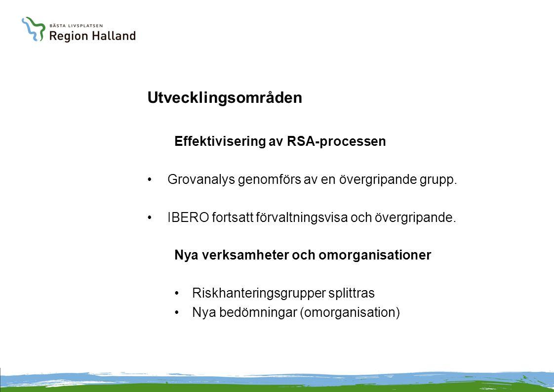 Utvecklingsområden Effektivisering av RSA-processen