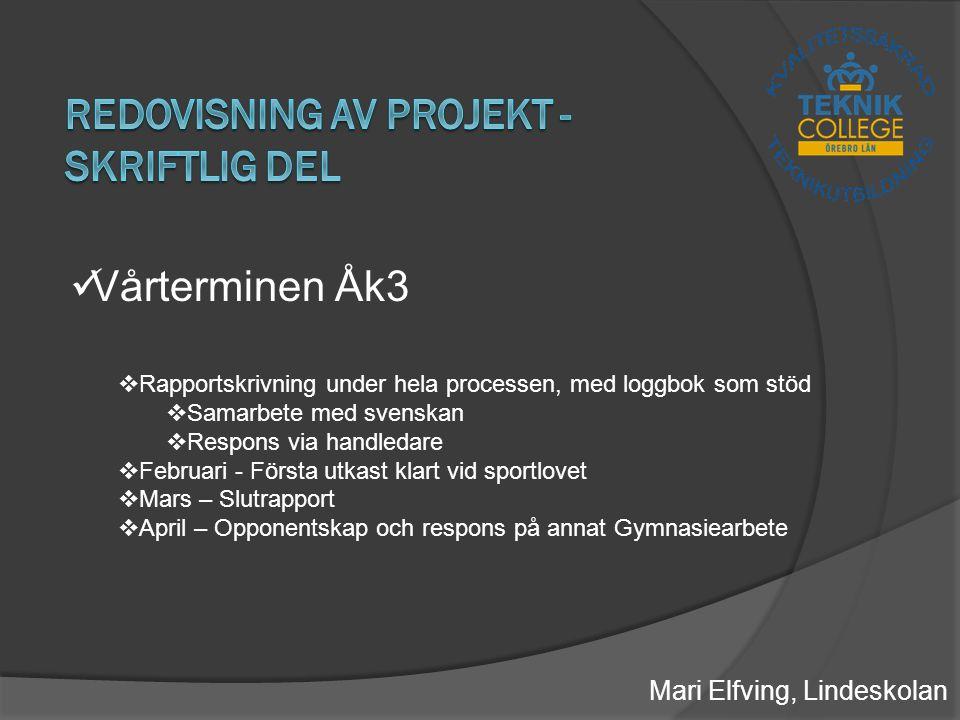 Redovisning av projekt - skriftlig del
