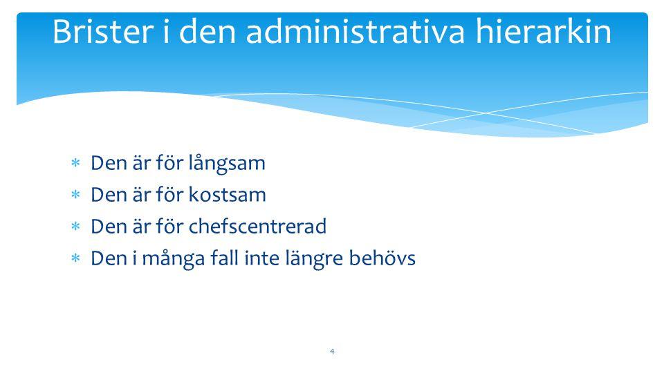 Brister i den administrativa hierarkin