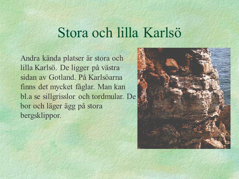 Stora och lilla Karlsö