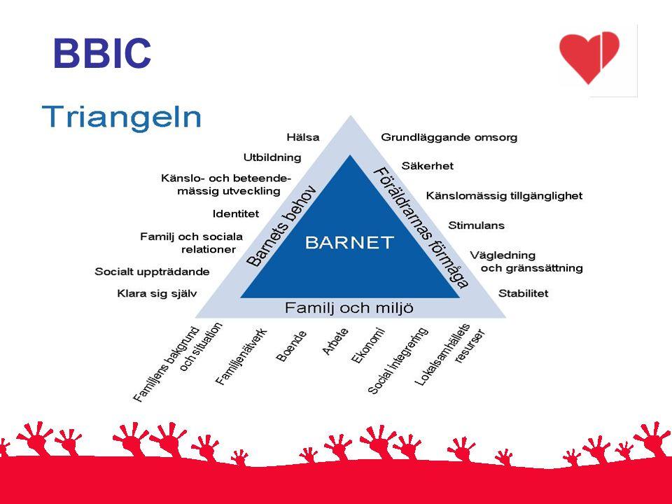 BBIC BBIC-triangeln 12