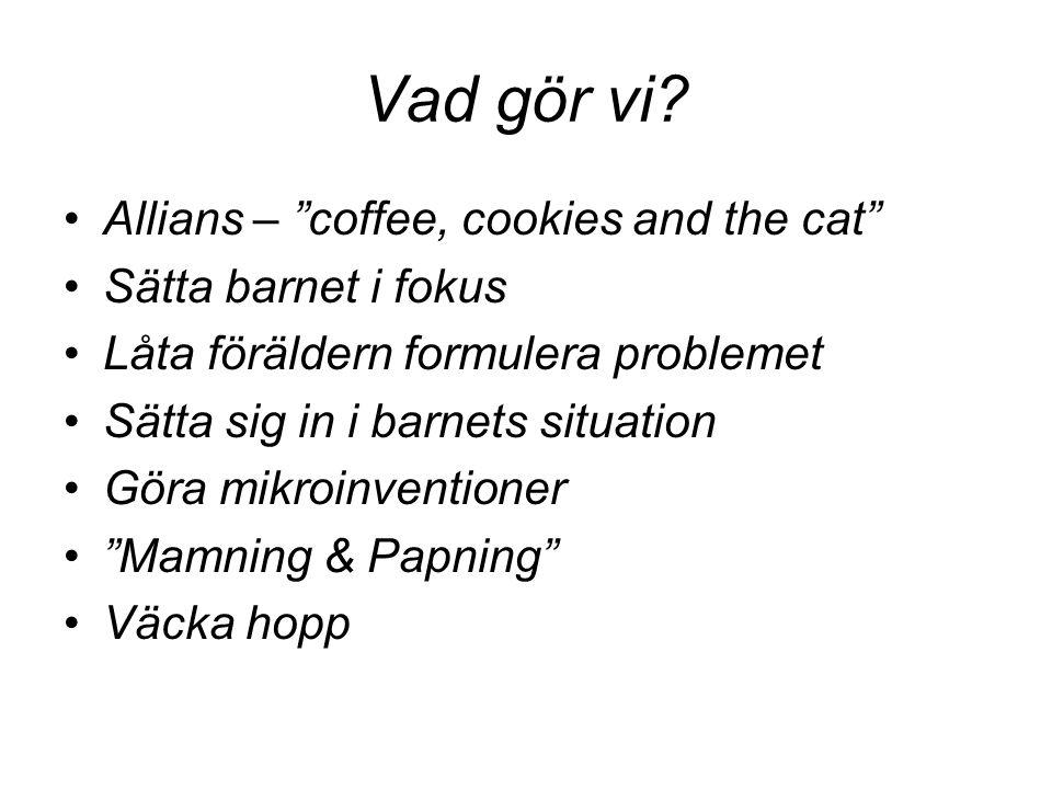 Vad gör vi Allians – coffee, cookies and the cat