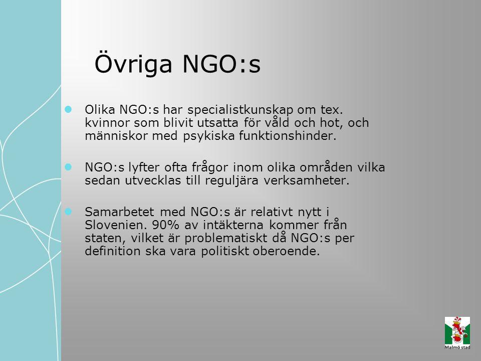 Övriga NGO:s Olika NGO:s har specialistkunskap om tex. kvinnor som blivit utsatta för våld och hot, och människor med psykiska funktionshinder.