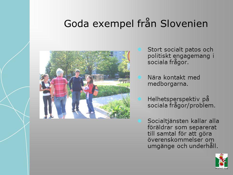 Goda exempel från Slovenien