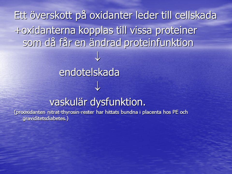 Ett överskott på oxidanter leder till cellskada