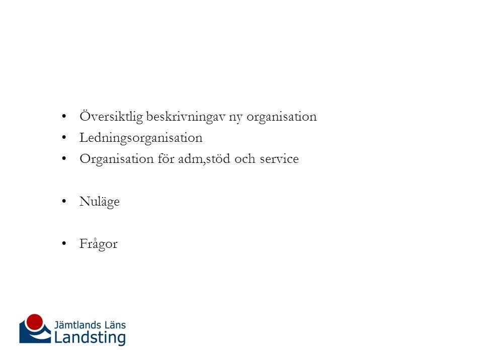 Översiktlig beskrivningav ny organisation