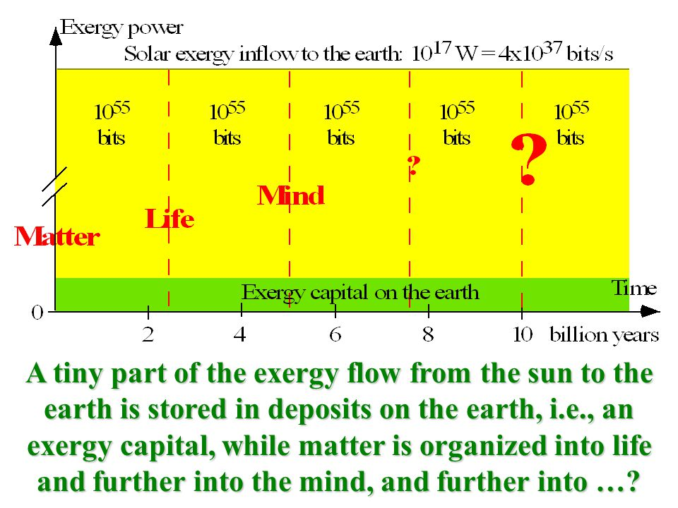 A tiny part of the exergy flow from the sun to the earth is stored in deposits on the earth, i.e., an exergy capital, while matter is organized into life and further into the mind, and further into …