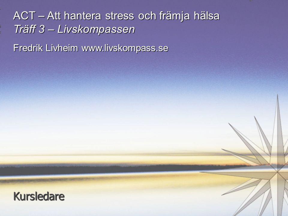 ACT – Att hantera stress och främja hälsa Träff 3 – Livskompassen