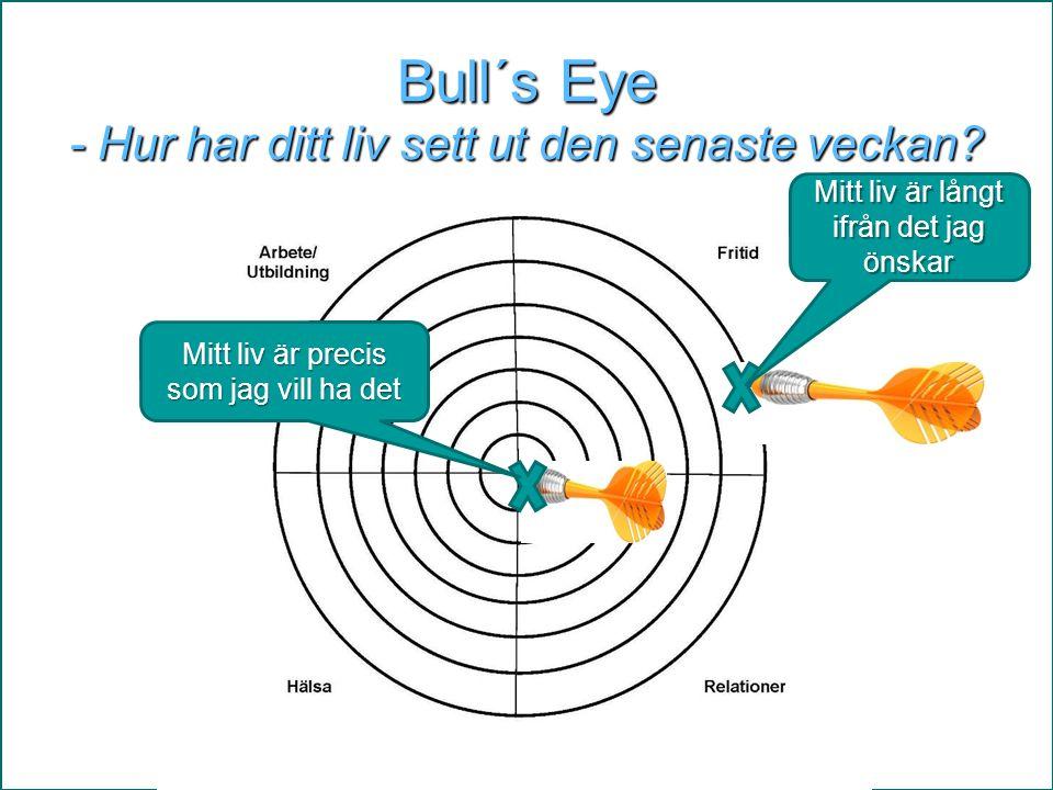 Bull´s Eye - Hur har ditt liv sett ut den senaste veckan