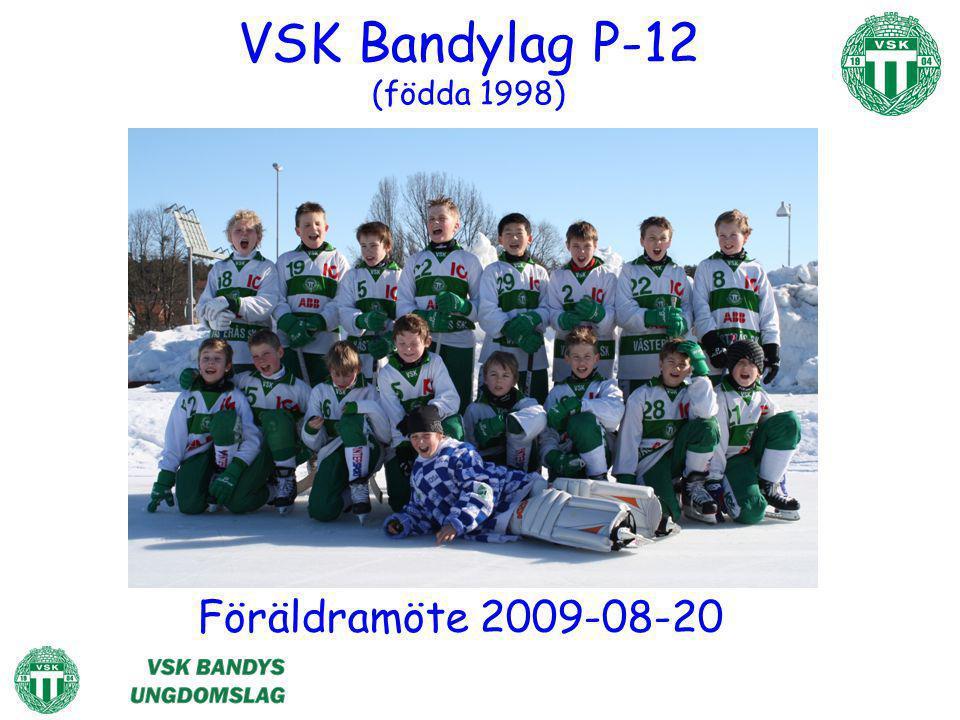 VSK Bandylag P-12 (födda 1998)