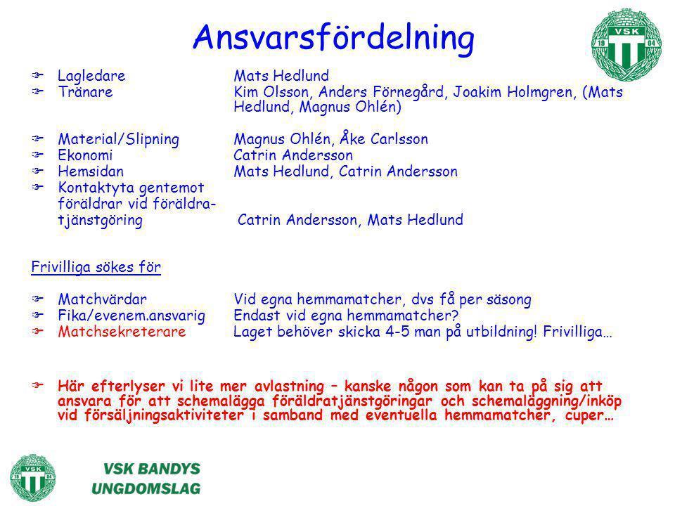 Ansvarsfördelning Lagledare Mats Hedlund