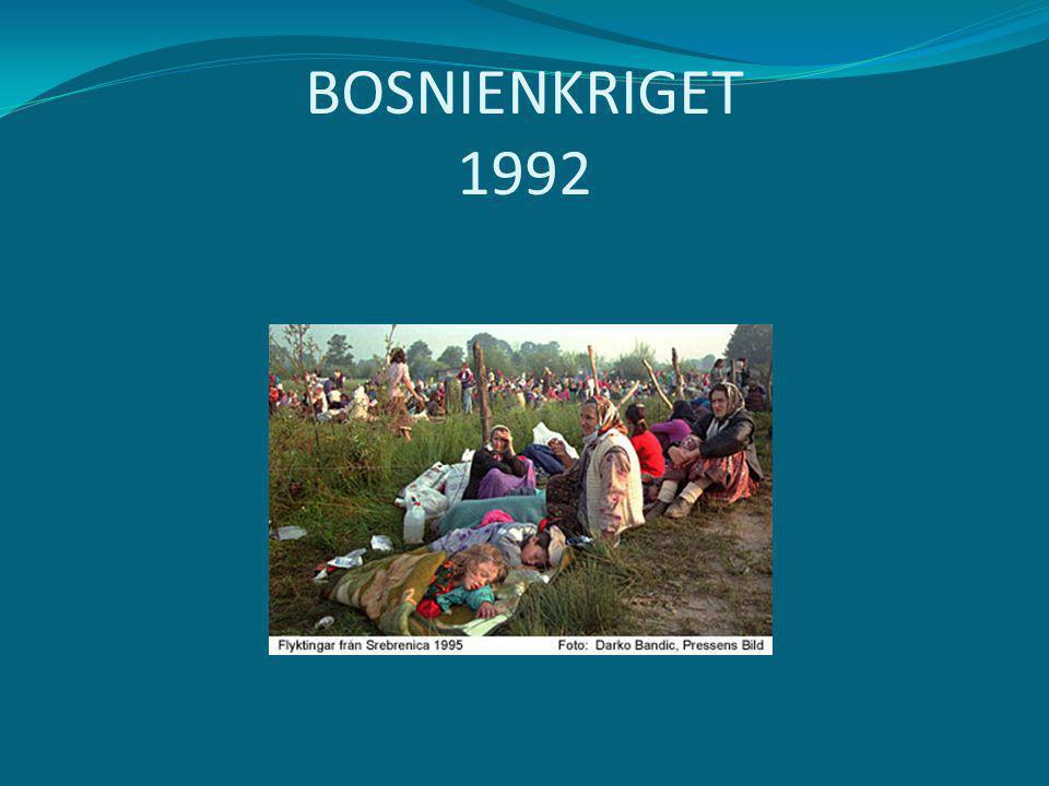 BOSNIENKRIGET 1992
