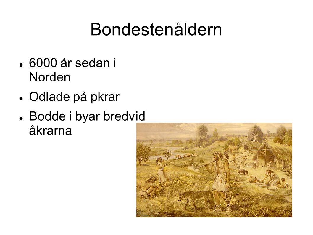 Bondestenåldern 6000 år sedan i Norden Odlade på pkrar