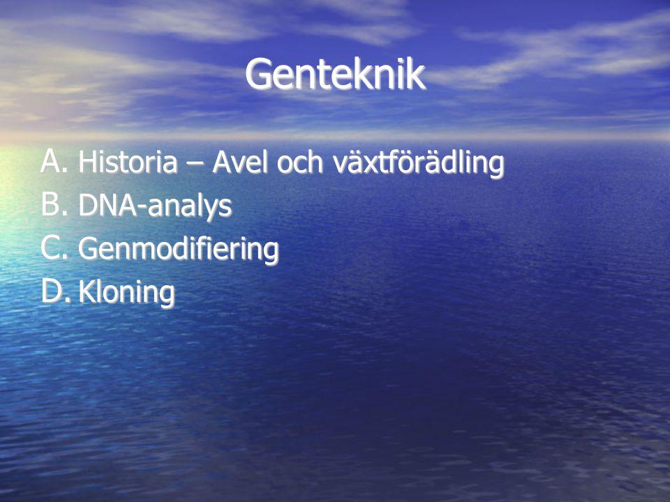 Genteknik Historia – Avel och växtförädling DNA-analys Genmodifiering