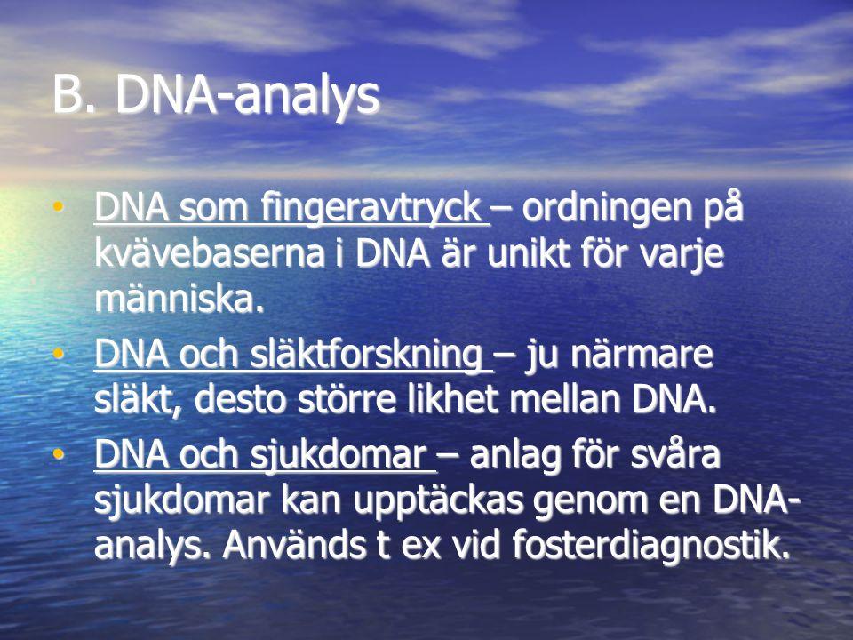 B. DNA-analys DNA som fingeravtryck – ordningen på kvävebaserna i DNA är unikt för varje människa.