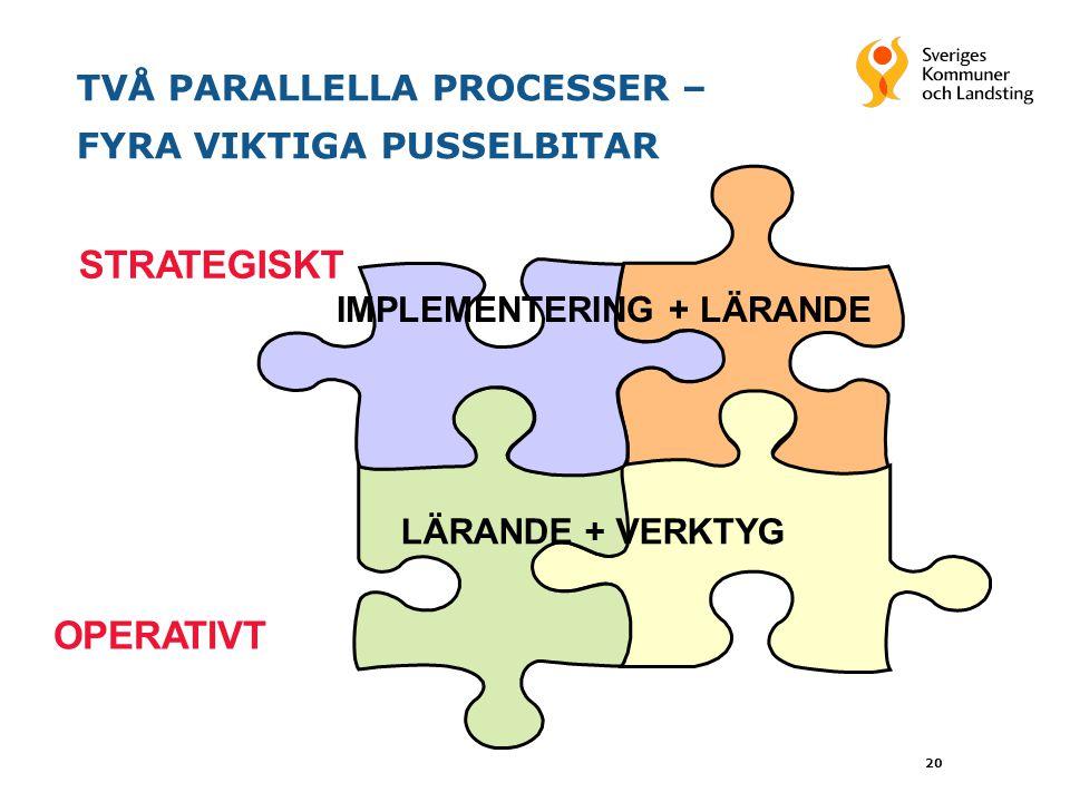 TVÅ PARALLELLA PROCESSER – FYRA VIKTIGA PUSSELBITAR