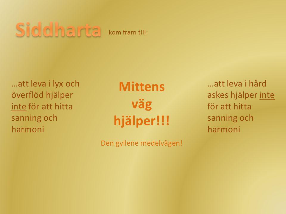 Siddharta Mittens väg hjälper!!! …att leva i lyx och
