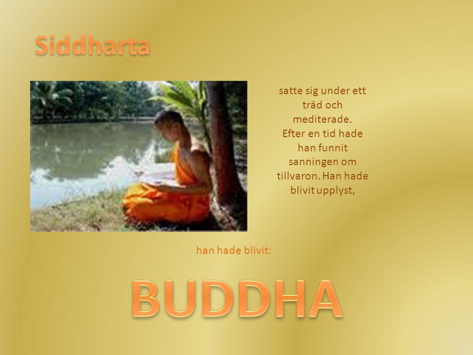 BUDDHA Siddharta satte sig under ett träd och mediterade.