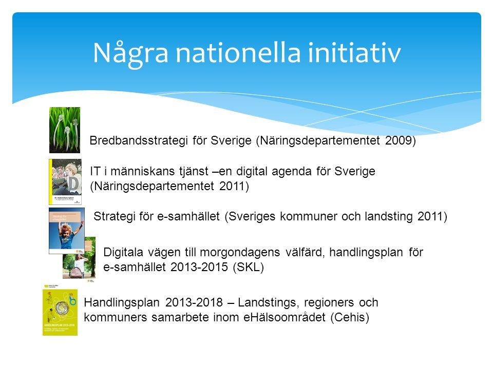 Några nationella initiativ