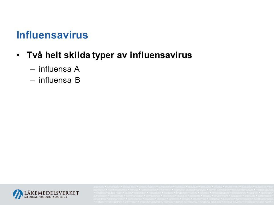 Influensavirus Två helt skilda typer av influensavirus influensa A