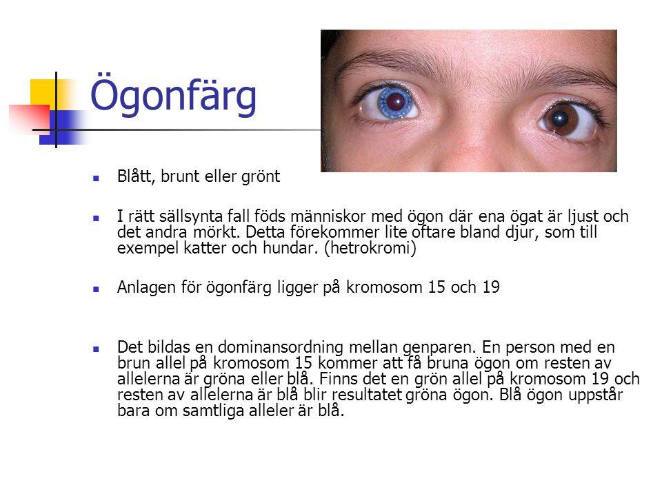 Ögonfärg Blått, brunt eller grönt