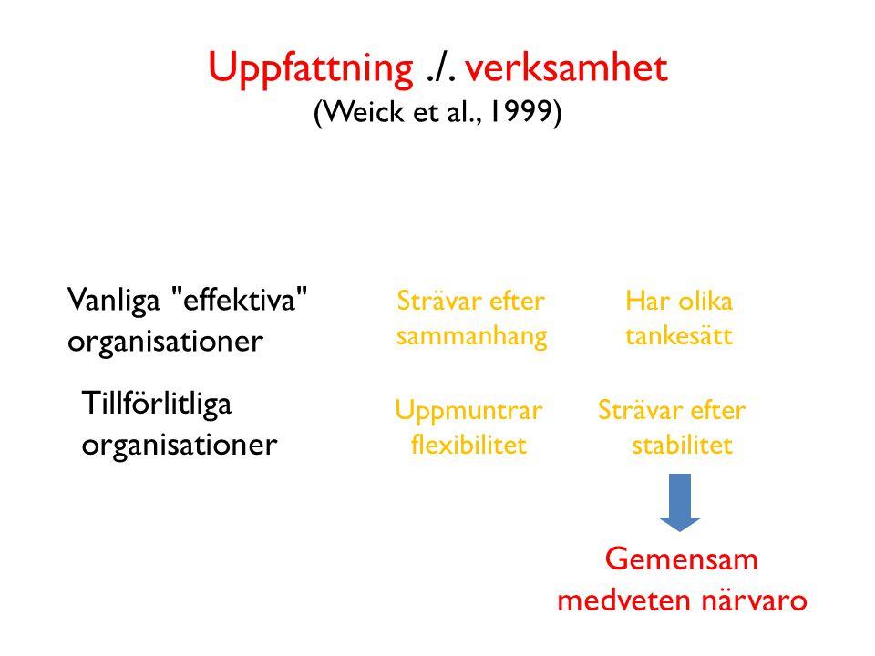 Uppfattning ./. verksamhet (Weick et al., 1999)