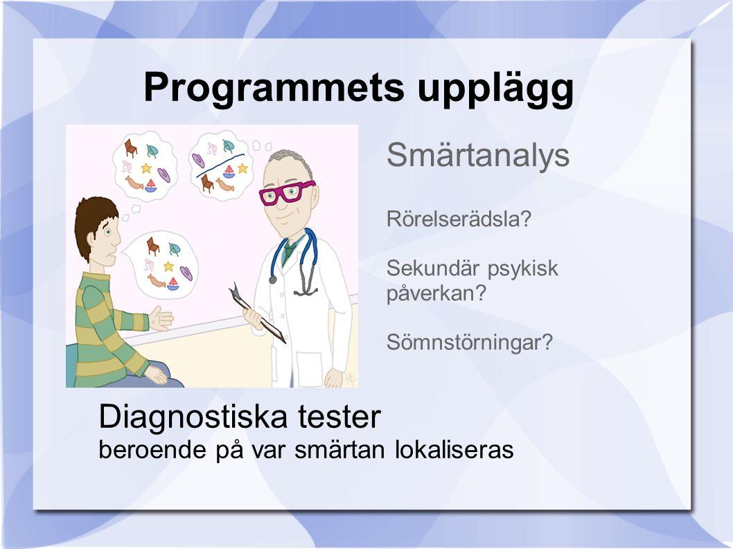 Programmets upplägg Smärtanalys Diagnostiska tester