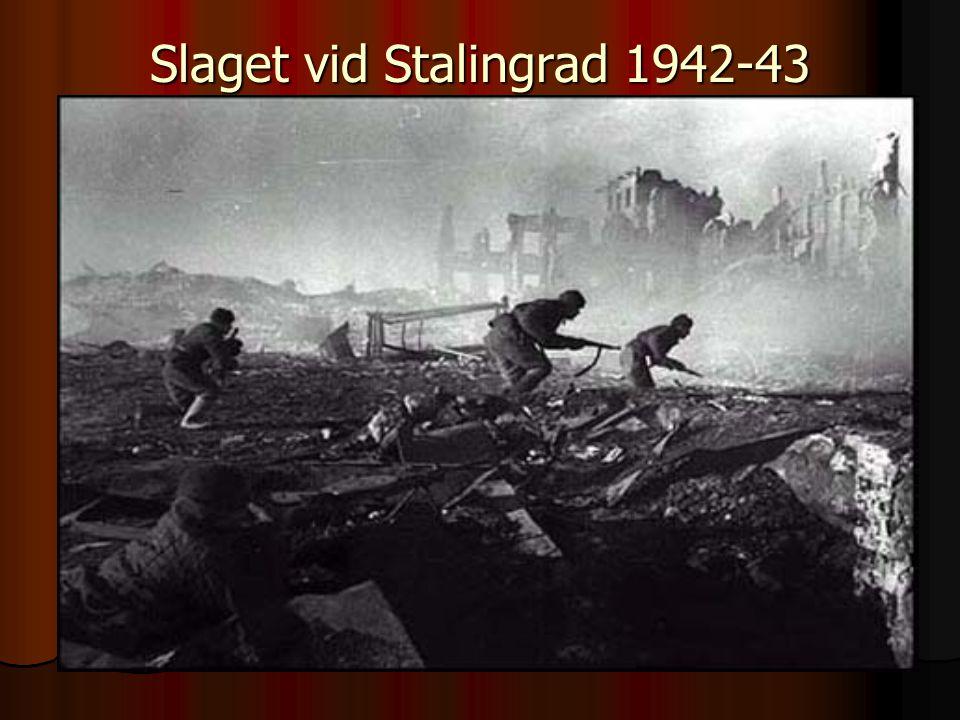 Slaget vid Stalingrad 1942-43
